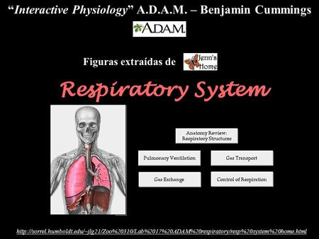 """Interactive Physiology"" A.D.A.M. – Benjamin Cummings."
