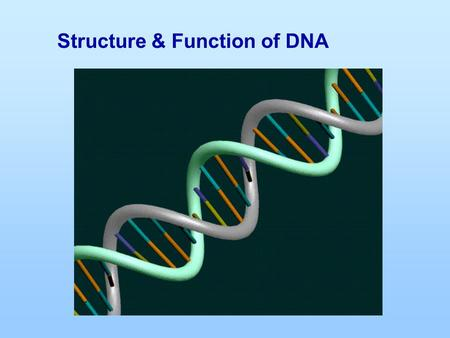 Structure & Function of DNA. DNA and RNA are nucleic acids that consist of long chains of nucleotides The nucleotides have three parts; 1.Phosphate 2.Nitrogen.