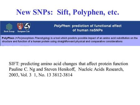 New SNPs: Sift, Polyphen, etc. SIFT: predicting amino acid changes that affect protein function Pauline C. Ng and Steven Henikoff, Nucleic Acids Research,