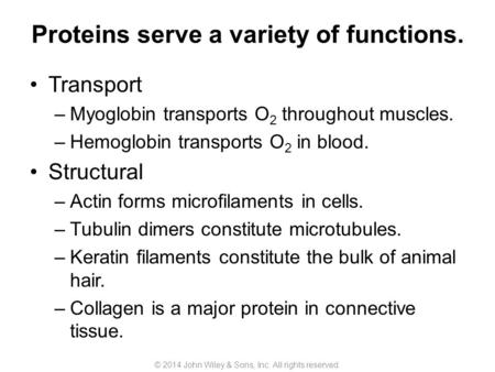 Proteins serve a variety of functions. Transport –Myoglobin transports O 2 throughout muscles. –Hemoglobin transports O 2 in blood. Structural –Actin forms.