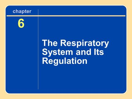 Chapter 6 The Respiratory System and Its Regulation.