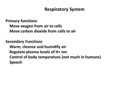 Respiratory System Primary functions Move oxygen from air to cells