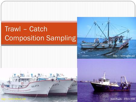 Trawl – Catch Composition Sampling  Joël Prado - FAO/FIIT