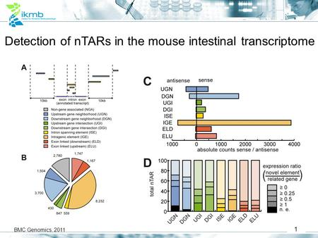 1 Detection of nTARs in the mouse intestinal transcriptome BMC Genomics, 2011.