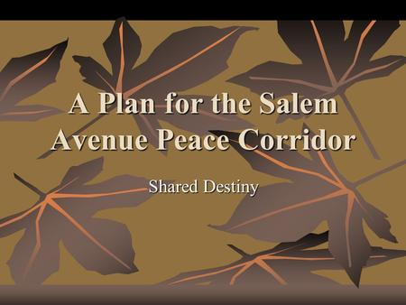 A Plan for the Salem Avenue Peace Corridor Shared Destiny.