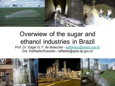 Overwiew of the sugar and ethanol industries in Brazil Prof. Dr. Edgar G. F. de Beauclair - Dra. Raffaella Rossetto -