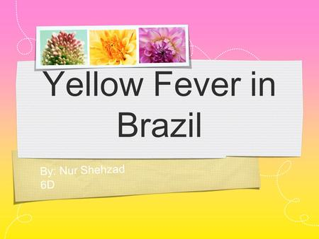 By: Nur Shehzad 6D Yellow Fever in Brazil. Introduction This presentation will persuade the United Nations (UN) to give money to Brazil so that they combat.
