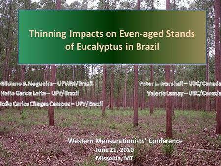 Thinning Impacts on Even-aged Stands of Eucalyptus in Brazil Thinning Impacts on Even-aged Stands of Eucalyptus in Brazil June 21, 2010 Missoula, MT Western.