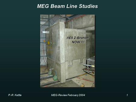 P.-R. KettleMEG-Review February 20041 MEG Beam Line Studies  E5 Z-Branch NOW !!! NOW !!!