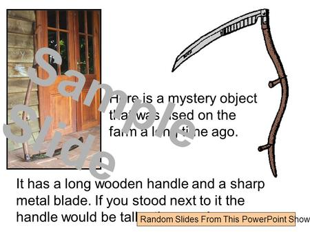Here is a mystery object that was used on the farm a long time ago. It has a long wooden handle and a sharp metal blade. If you stood next to it the handle.