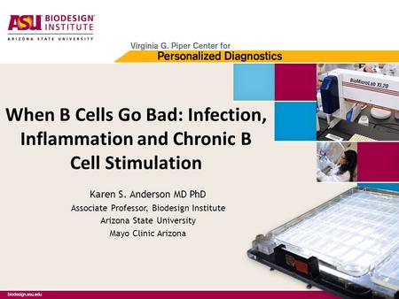 When B Cells Go Bad: Infection, Inflammation and Chronic B Cell Stimulation Karen S. Anderson MD PhD Associate Professor, Biodesign Institute Arizona State.