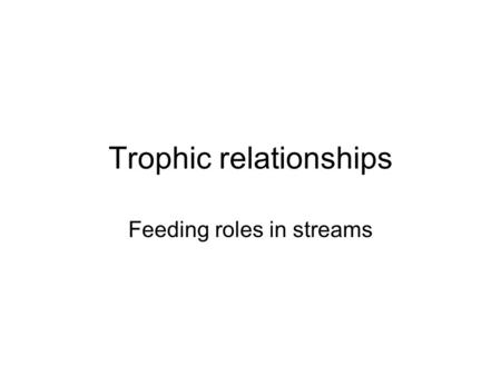 Trophic relationships Feeding roles in streams. Aquatic insects categorized: Food type and how food is obtained Feeding guilds = functional groups.