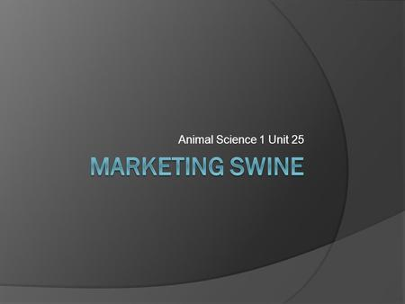 Animal Science 1 Unit 25. Objectives  Describe 3 methods of marketing hogs  List and describe the grades of market hogs  List and describe grades of.