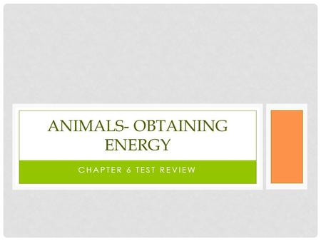 CHAPTER 6 TEST REVIEW ANIMALS- OBTAINING ENERGY. EXPLAIN THE DIFFERENCE BETWEEN THE TEETH OF... Carnivores Herbivores omnivores.