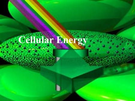 Cellular Energy. I. Energy for Living Things A. Organisms need energy to live B. Energy is the ability to do work.