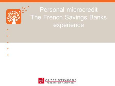 Personal microcredit The French Savings Banks experience.