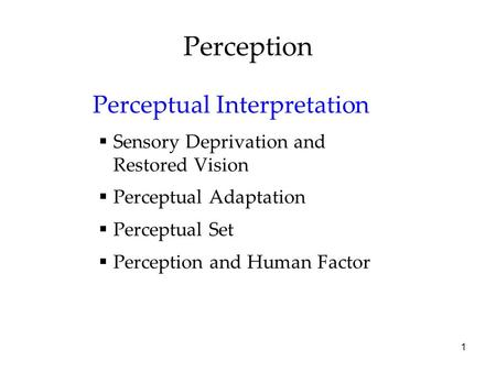 Perception Perceptual Interpretation