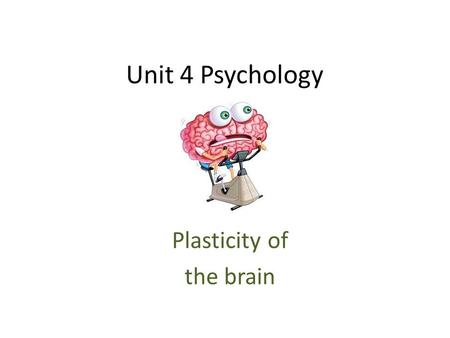 Unit 4 Psychology Plasticity of the brain. Brain Plasticity The brain's ability to reorganise and relocate neural pathways based on new experiences and.