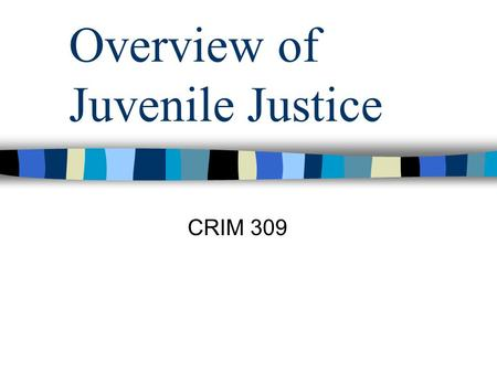 Overview of Juvenile Justice CRIM 309. Overview of the Juvenile Justice System The JJS is a relatively new system—the first juvenile court was established.