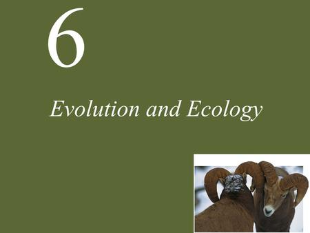 Evolution and Ecology.