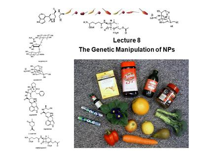 Lecture 8 The Genetic Manipulation of NPs. Learning Outcomes Genetic manipulation of NP metabolism Why one might want to manipulate NPs composition? What.