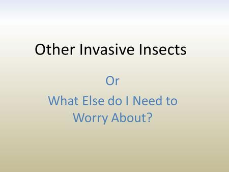 Other Invasive Insects Or What Else do I Need to Worry About?
