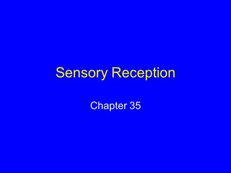 Sensory Reception Chapter 35. Sensory Systems The means by which organisms receive signals from the external world and internal environment Many animals.
