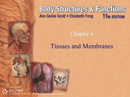 © 2009 Delmar, Cengage Learning Chapter 4 Tissues and Membranes.