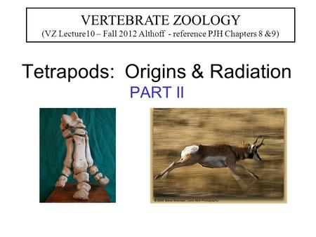 Tetrapods: Origins & Radiation PART II VERTEBRATE ZOOLOGY (VZ Lecture10 – Fall 2012 Althoff - reference PJH Chapters 8 &9)
