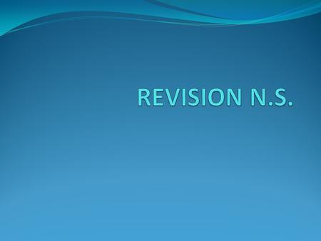 REVISION N.S..