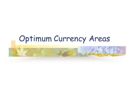 Optimum Currency Areas. Optimum Currency Areas I 1. A theoretical construct, no country conforms to the ideal but the US with high labor and capital mobility.