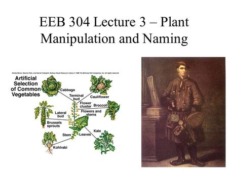 EEB 304 Lecture 3 – Plant Manipulation and Naming.