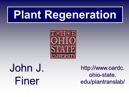 Plant Regeneration John J. Finer  ohio-state. edu/plantranslab/