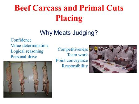 Beef Carcass and Primal Cuts Placing Confidence Value determination Logical reasoning Personal drive Competitiveness Team work Point conveyance Responsibility.