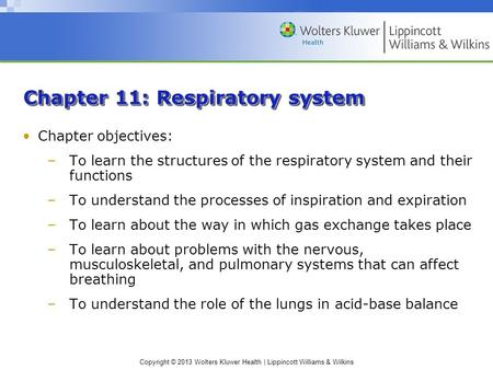 Copyright © 2013 Wolters Kluwer Health | Lippincott Williams & Wilkins Chapter 11: Respiratory system Chapter objectives: –To learn the structures of the.