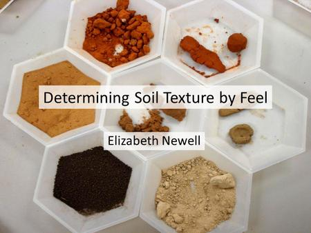Determining Soil Texture by Feel Elizabeth Newell.