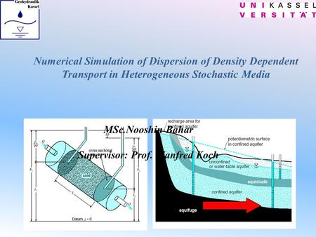 Numerical Simulation of Dispersion of Density Dependent Transport in Heterogeneous Stochastic Media MSc.Nooshin Bahar Supervisor: Prof. Manfred Koch.
