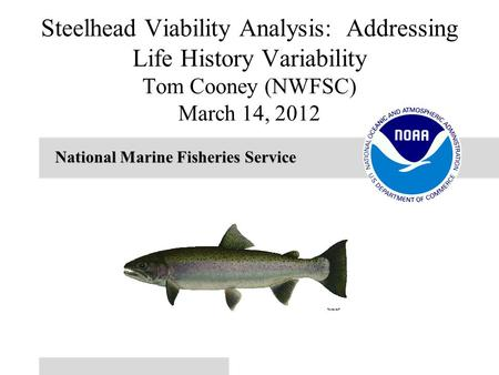 National Marine Fisheries Service Steelhead Viability Analysis: Addressing Life History Variability Tom Cooney (NWFSC) March 14, 2012.
