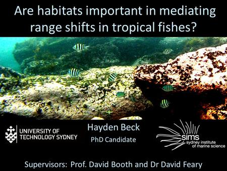 Are habitats important in mediating range shifts in tropical fishes? Hayden Beck PhD Candidate Supervisors: Prof. David Booth and Dr David Feary.
