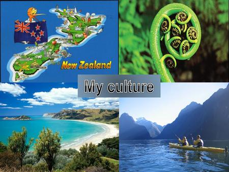 Rotorua is the best place in the world to travel because. It has allot of tourist attractions in rotorua to look and explore new things.