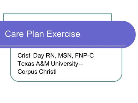Care Plan Exercise Cristi Day RN, MSN, FNP-C Texas A&M University – Corpus Christi.