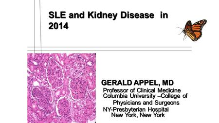 SLE and Kidney Disease in 2014 GERALD APPEL, MD GERALD APPEL, MD Professor of Clinical Medicine Columbia University –College of Professor of Clinical Medicine.