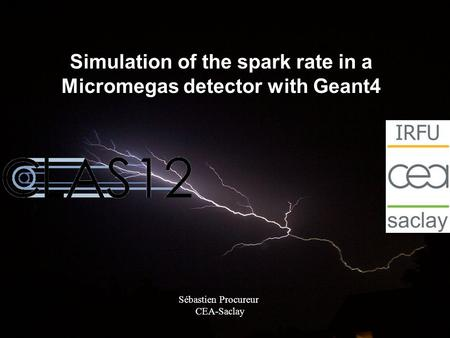 Simulation of the spark rate in a Micromegas detector with Geant4 Sébastien Procureur CEA-Saclay.