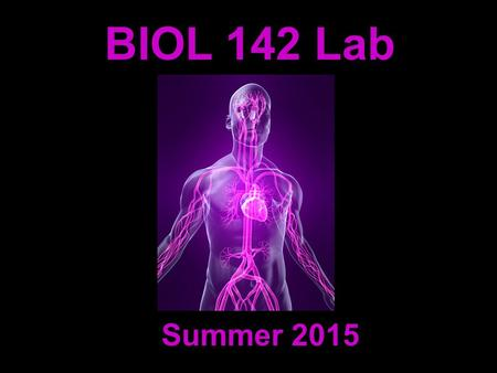 BIOL 142 Lab Summer 2015. Michelle Smith   Instructor: Contact Information: