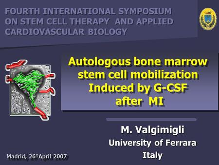 M. Valgimigli University of Ferrara Italy Autologous bone marrow stem cell mobilization Induced by G-CSF after MI Autologous bone marrow stem cell mobilization.
