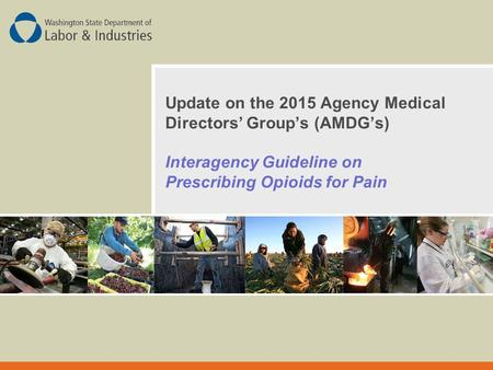 Update on the 2015 Agency Medical Directors' Group's (AMDG's) Interagency Guideline on Prescribing Opioids for Pain.
