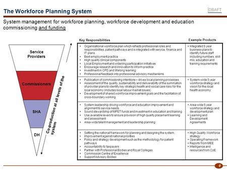 0 Organisational workforce plan which reflects professional roles and responsibilities, patient pathways and is integrated with service, finance and IT.