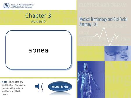 Chapter 3 Word List 5 Without breath apnea Note: The Enter key and the Left Click on a mouse will also turn and forward flash cards.