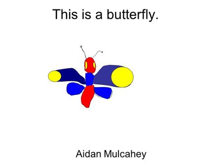 This is a butterfly. Aidan Mulcahey. This is a butterfly. Aiden Dively.