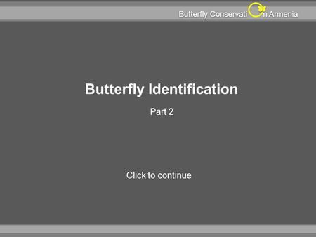N Armenia Butterfly Conservati Butterfly Identification Part 2 Click to continue.